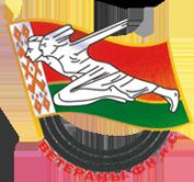 Logo bvsporta